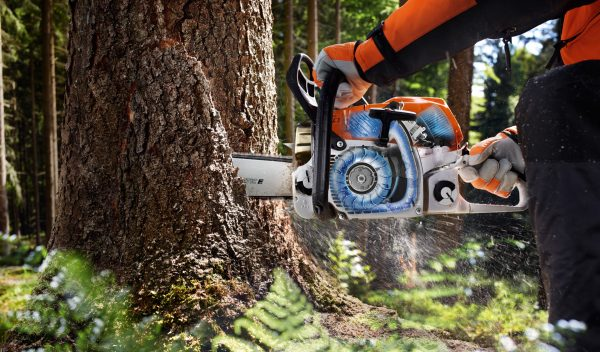 MS 362 C-M Chainsaw RS