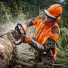 MS 462 C-M Chainsaw ESLight